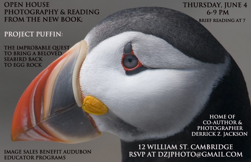 Project-Puffin-Event-June-4